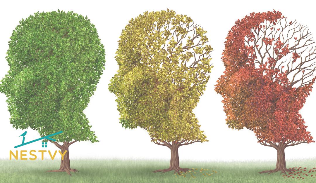 Dementia Care Guide